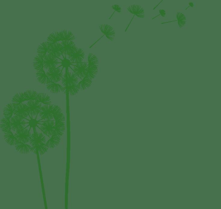 pissenlit vert - logo l'envol du savoir